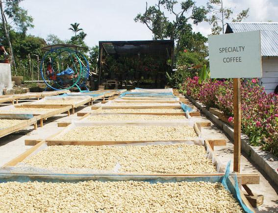 Il Fairtrade è in crescita nonostante la pandemia
