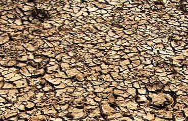 Desertificazione: 20% dell'Italia a rischio